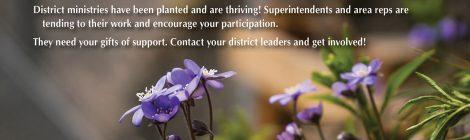 District Promotion